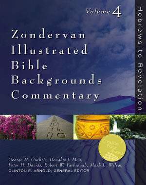 Zondervan Exegetical Commentary On The New Zondervan border=